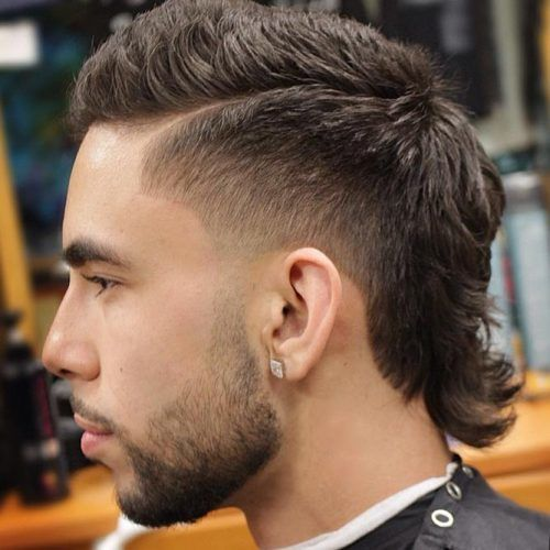Strange Best Mullet Haircut Ideas To Rock The Style Menshaircuts Com Natural Hairstyles Runnerswayorg
