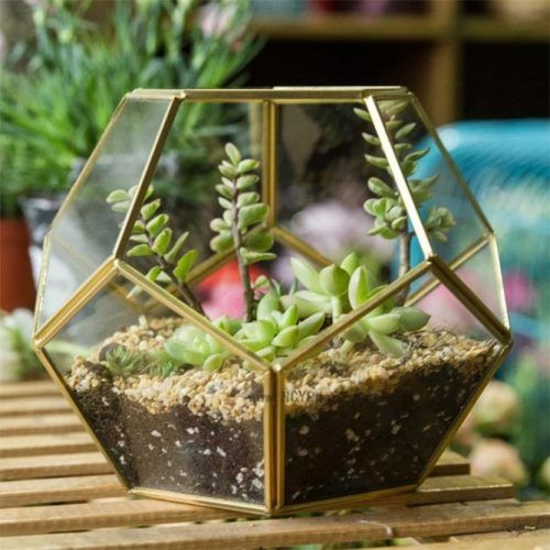Faceted Terrariums #christmasgifts #giftsforher #christmaspresent