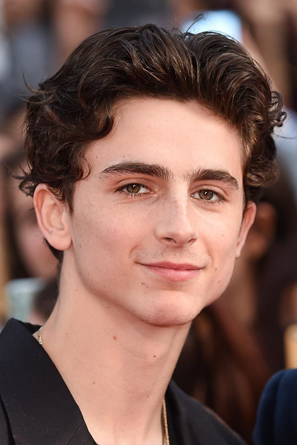 Timothee Chalamet's Brushed Up And Back Waves #surferhair #longhairmen #menshairstyles #beachwaves