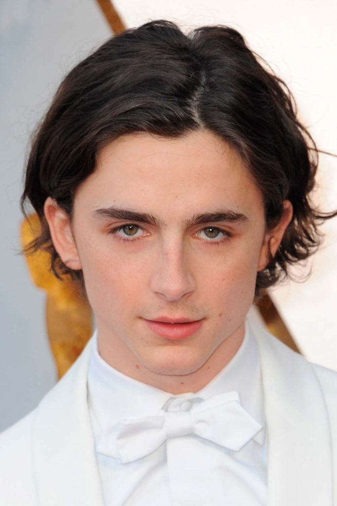 Timothée Chalamet Eboy Haircut #eboyhaircut #eboyhair #curtainshair #curtainshairstyles #middlepartmen